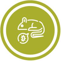 Raticidas e Inseticidas - Agricultura
