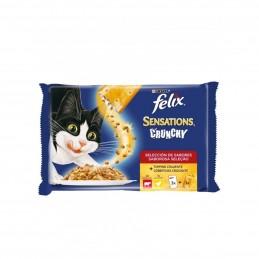 Felix Crunchy Carnes 4x100gr - 1540260023